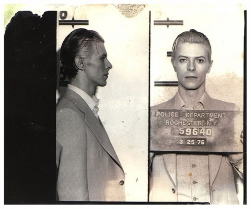 david-bowie-mugshot-full-500x417